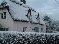 lyndale snow